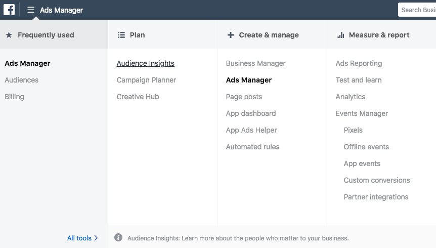 Audience insights tool